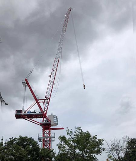 川建D120B动臂式塔式起重机